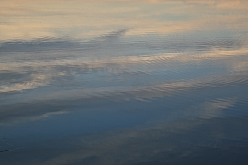 Reflections on the Ashley River