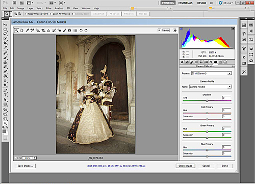 Adobe Camera Raw - Camera Calebration - Camera Neutral