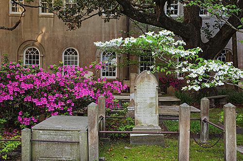 Dogwood-Graveyard