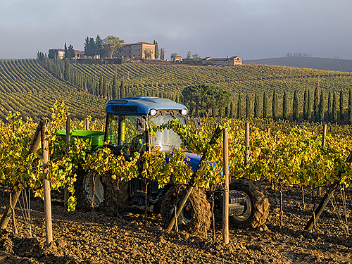 Tuscan Tractors in the Mist - 2