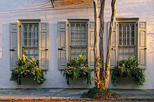Window Boxes and Crape Myrtle – Charleston Photographic Workshop