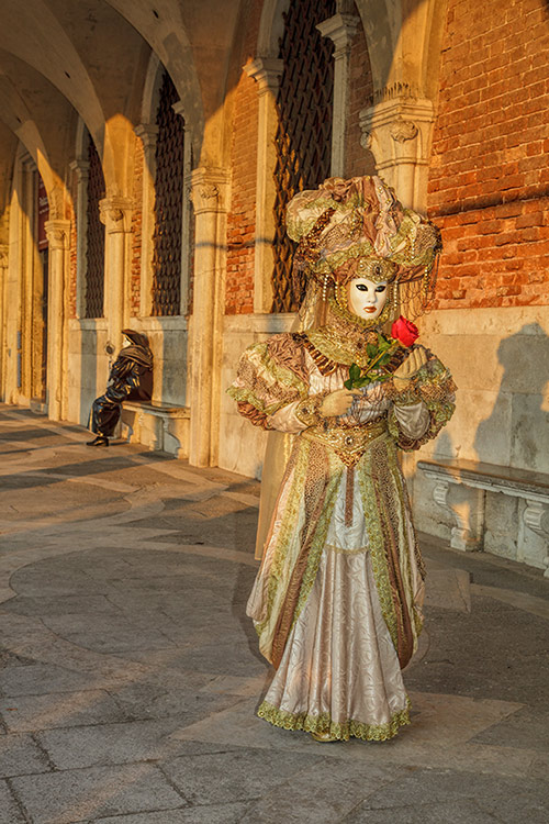 Cast Your Shadow - Venice Carnival