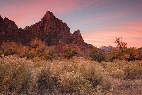 Watchman - Zion National Park - Raw Image