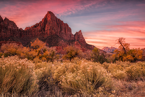 Watchman - Zion National Park