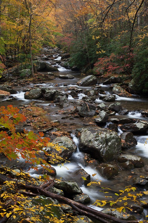 Unprocessed Fall colors along Little River Road in the Smoky Mountains