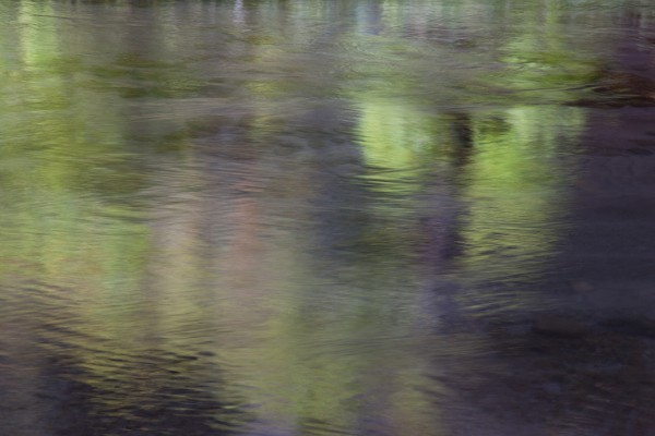 Cottonwood Reflections on the Virgin River in Zion - unprocessed