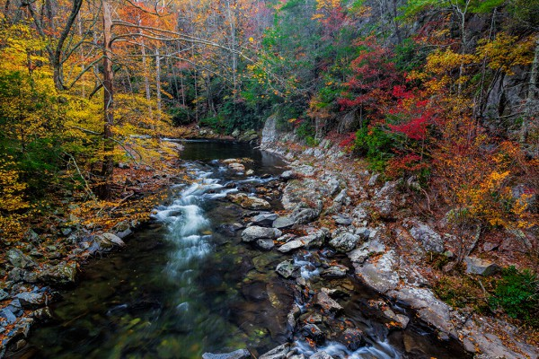 Smoky Mountain fall tapestry